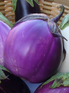 Recipe for pickled eggplant with Italian herbs and seasoning – The ...