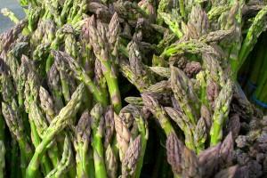 Asparagus (C.Cancler)