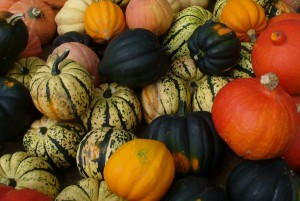 Winter squash Photo by Carole Cancler