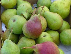 ubleen-pears-at-the-farmers-market-photo-copyright-by-carole-cancler